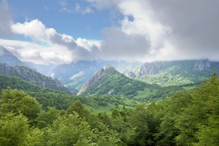 castile leon: valley at Picos de Europa mountains in Leon Spain