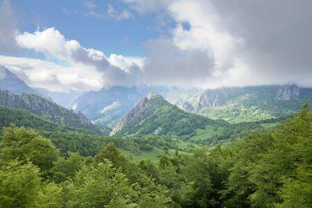 picos: valley at Picos de Europa mountains in Leon Spain