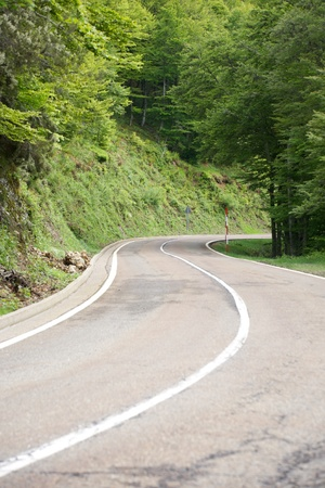 road at forest in mountains of Asturias Spain photo