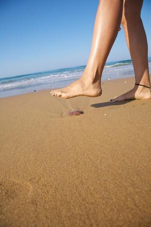 medusa: woman foot ready to push a medusa in a beach
