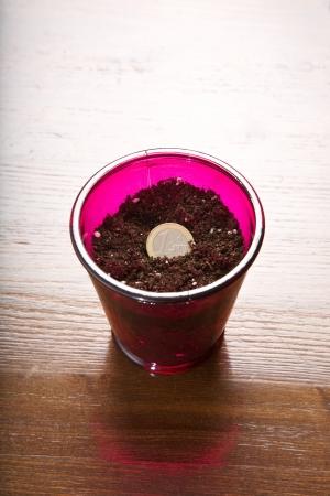 fondos violeta: un vaso con una moneda euro como la planta Foto de archivo