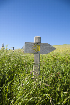 camino: wood arrow signpost with public Middle Ages symbol of Camino de Santiago the biggest Christian pilgrimage route this in Asturias Spain Europe