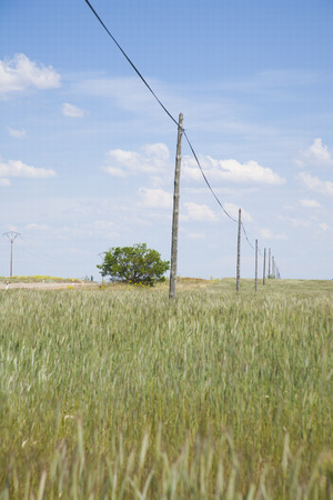 ancient telephone: ancient telephone line cable pole in landscape field Castilla Spain