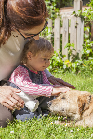 petting: brunette woman mother and blonde baby two years old age touching with hand and petting a brown terrier breed dog belly lying over green grass lawn