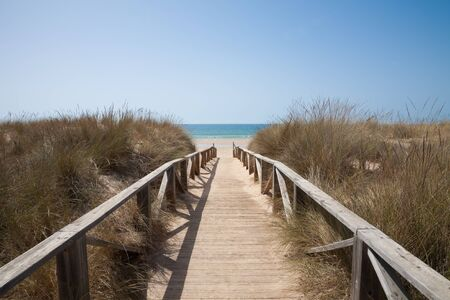 hand rail: wooden walkway or path with hand rail with green blue turquoise water ocean or sea over nature in Vejer Palmar Beach seaside in Cadiz AndalusiaSpain Stock Photo