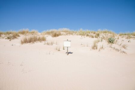 blank placard in landscape of dune with golden sand and plants horizon, blue sky in Vejer Palmar Beach Cadiz Spain