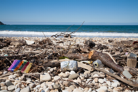 contaminacion del agua: tree branches, metal can, plastic bag and bottle and waste on seashore, with water of ocean horizon, at beach of Ribadesella, in Asturias Spain Europe