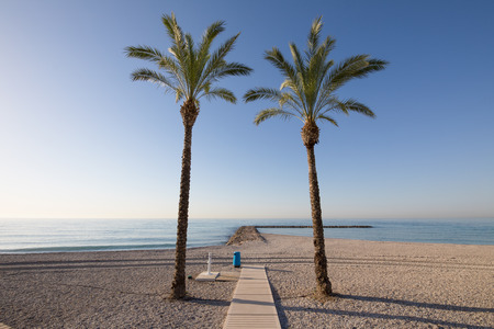 two palm trees framing water ocean in Els Terrers Beach, Benicassim, Castellon, Valencia, Spain, Europe. Wooden footway, pebbles, blue clear sky and Mediterranean Sea