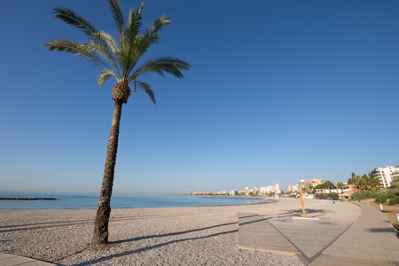 landscape Els Terrers Beach, in Benicassim, Castellon, Valencia, Spain, Europe. Palm tree, wooden boardwalk, buildings, blue clear sky and Mediterranean Sea Stock Photo