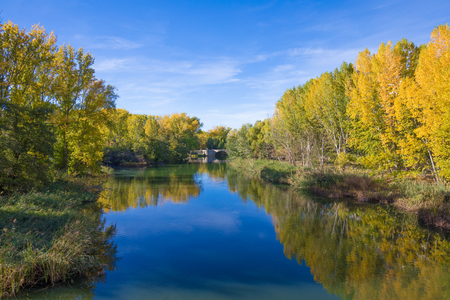 water river Carrion, with trees reflected in autumn, and Puentecillas bridge, from sixteenth century, in Palencia city, Castile Leon, Spain, Europe