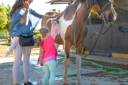little four years old girl taking care and brushing a horse with her mother outside of stables in a riding center