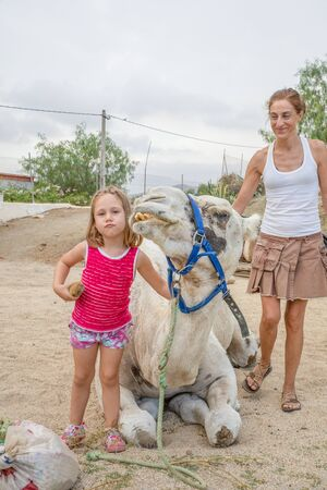 funny five years old cute girl looking at and making faces with dromedary sitting in countryside on summer and mother smiling Фото со стока
