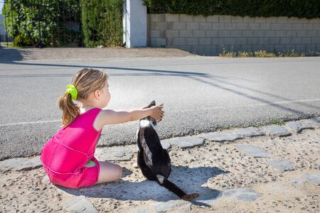 funny scene: little girl, five years old child with pink dress sitting on the ground, playing covering eyes to white and black cat on the street in Summertime