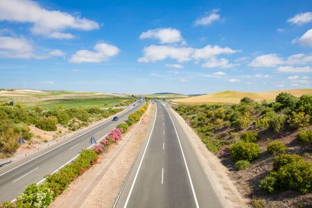 colorful spring time landscape with rural highway in nature, endless until horizon with blue sky and clouds, in Cadiz (Andalusia, Spain, Europe)