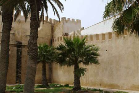 palmtrees: The town walls of Essaouira in Morocco, with battlements and tower, and palm trees growing in front. Stock Photo