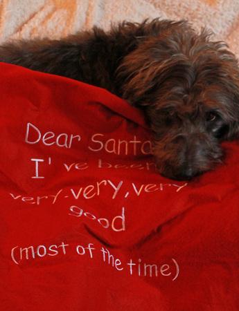 my dear: Dear Santa Stock Photo