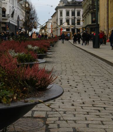 planters: A view of planters in the streets of Oslo during the winter festive shopping season.