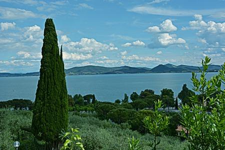 albero: Panorama sul Lago
