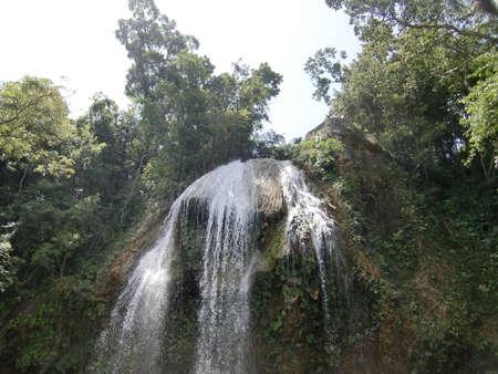 selva: Cascada en medio de la selva