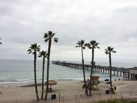 Palm trees at coastline and ocean with cloudy sky