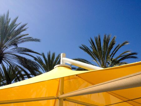 Yellow mesh canvas shade canopies and palm trees on sunny day Archivio Fotografico