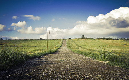 champ vert: Green field Landscape with country road
