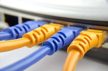 network cables connected to switch close up Stock Photo - 19338959