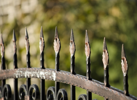 iron gate: metal fence close up