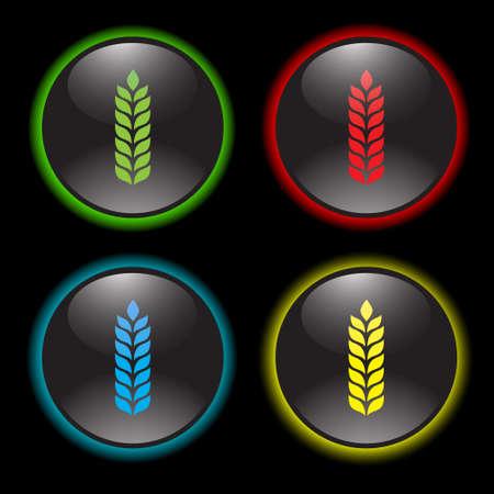 wheat vector icon Vector