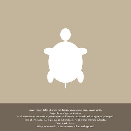 turtle vector icon Vector