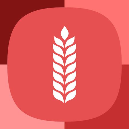 ear of wheat: wheat vector icon Illustration
