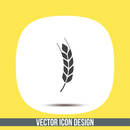 rye: Wheat vector icon. Organic whole grain sign. Agriculture symbol Illustration
