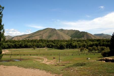 grassfield: gorhi-terelj national park - mongolia  Stock Photo