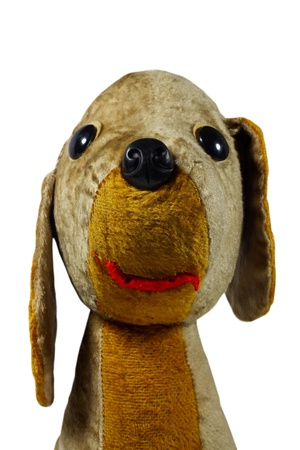 old plush dog toy on white background  photo