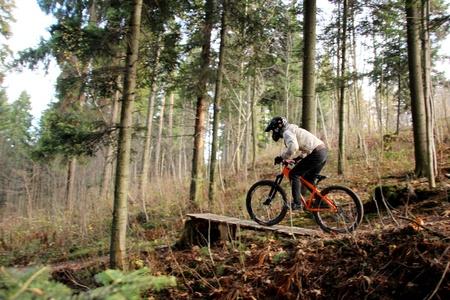 trail bike: A biker riding a mountain bike in a forest