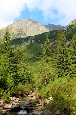 Mountains Tatry at Poland - Roztoka Valley photo