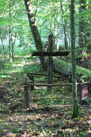 Cemetery in Bialowieza Forest, Podlasie, Poland Banque d'images