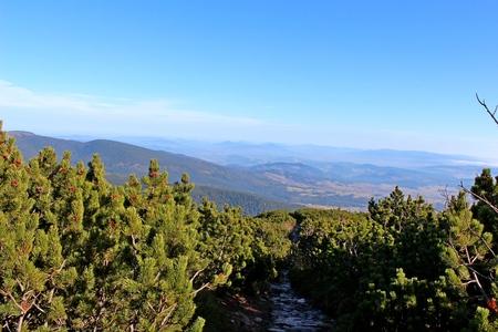 gora: View from Babia Gora, Beskidy, Poland