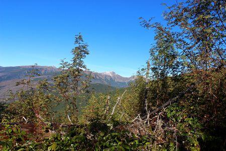 tatras: Mengusovska valley in High Tatras, Slovakia