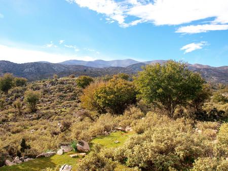 ida: Crete countryside