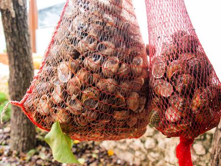 Snails in net ready to eat, Crete