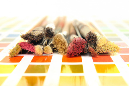 nuances: Artist paintbrushes on a color swatch