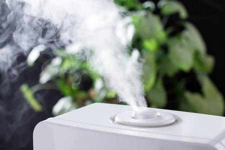 加湿器からの蒸気します。