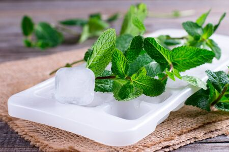 Fresh mint and ice cubes on the table. Freezing