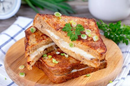 Hot homemade sandwich with mozzarella cheese on a wooden table