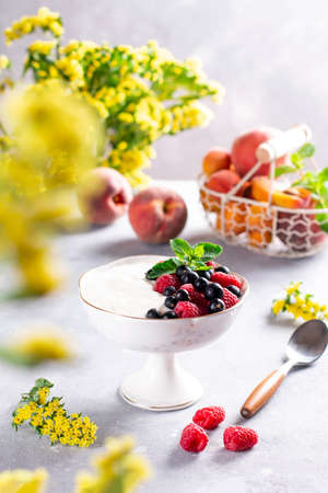 Bowl of fresh mixed berries and yogurt with farm fresh raspberries, blackberries and mint served on a light concrete background