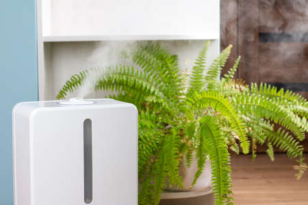 White air humidifier during work clean air and vaporizes steam up. Aromatherapy at home. Improving comfort of people.