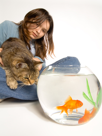 to restrain: A young girl holds her cat back who is about to pounce on two goldfish swimming in a small glass bowl.