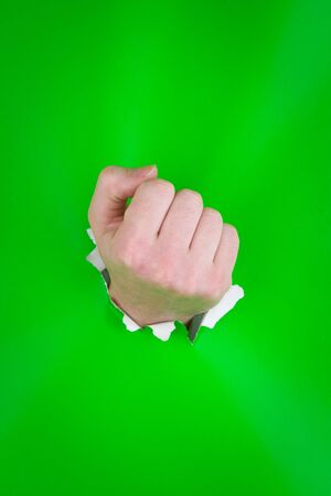Close up of clenched fist having punched through green background. Stock Photo - 4485094