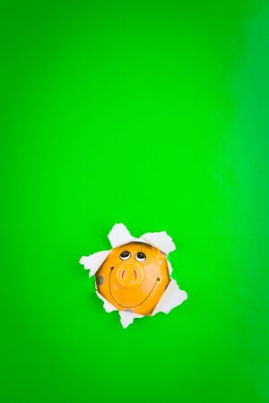 making hole: Piggy bank face making hole through green background.